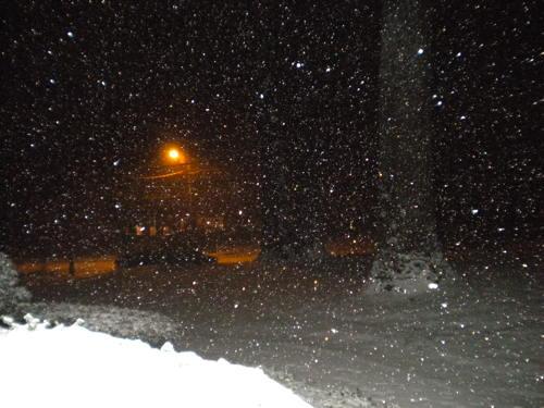 snowsnowsnow
